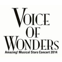 VOICE OF WONDERS
