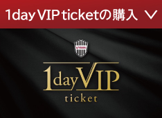1day VIP ticket